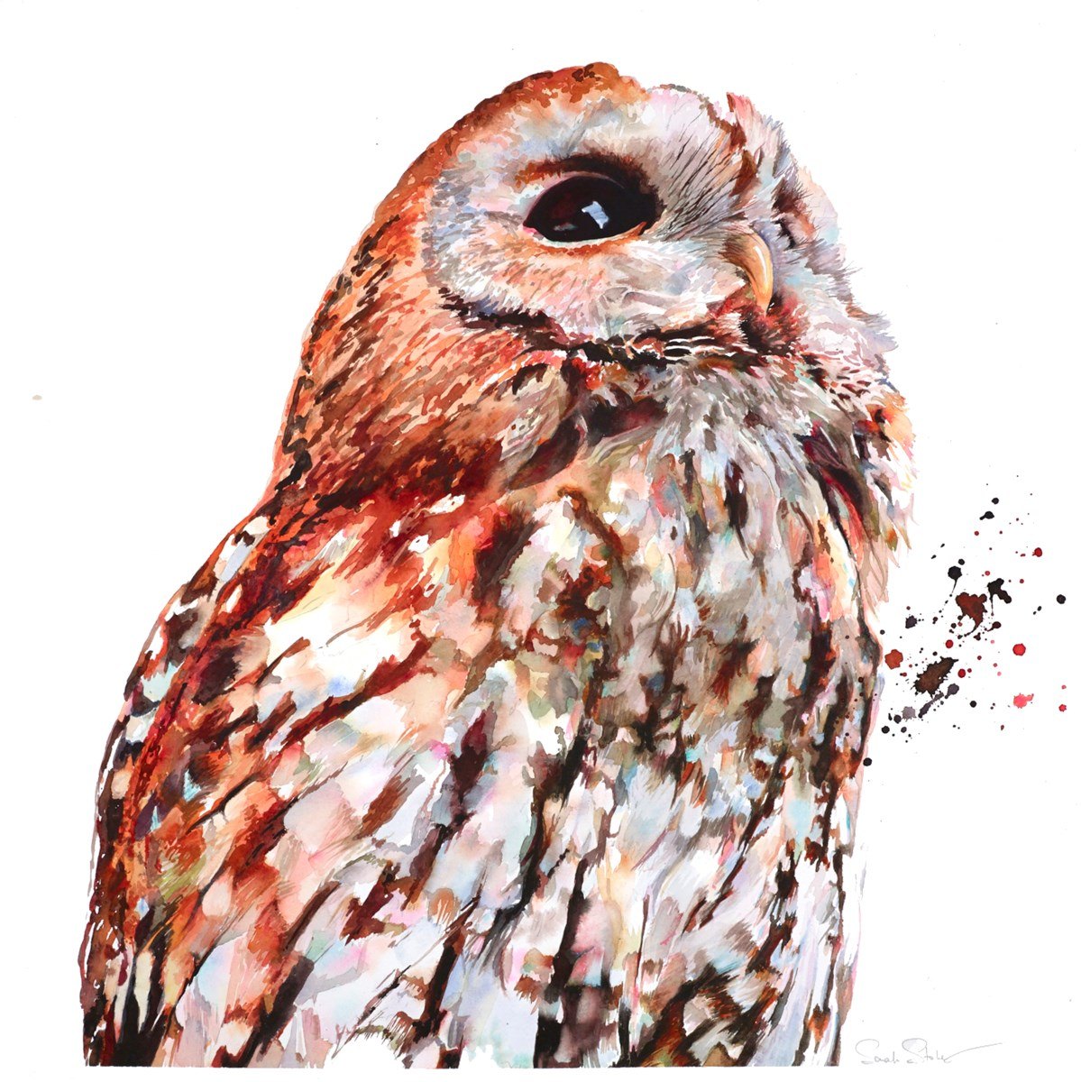 Woodland Tawny by sarah stokes -  sized 24x24 inches. Available from Whitewall Galleries